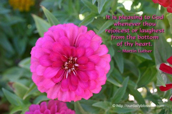It is pleasing to God whenever thou rejoicest or laughest from the bottom of thy heart.. ~ Martin Luther