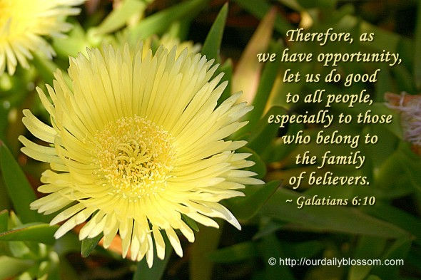 Therefore, as we have opportunity, let us do good to all people, especially to those who belong to the family of believers. ~ Galatians 6:10