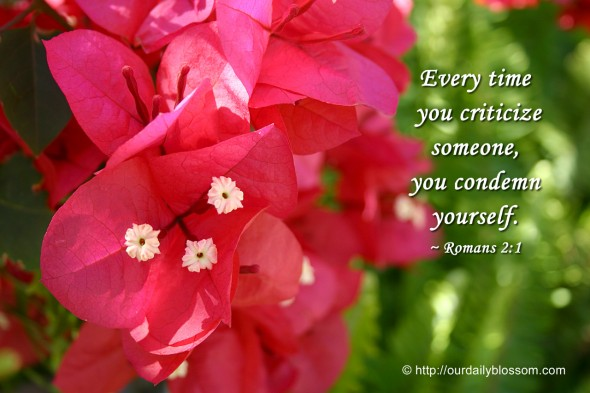 Every time you criticize someone, you condemn yourself.  ~ Romans 2:1