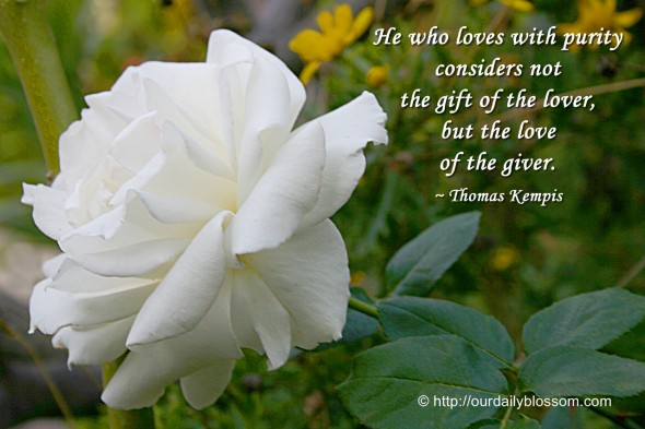 He who loves with purity considers not the gift of the lover, but the love of the giver. ~ Thomas Kempis