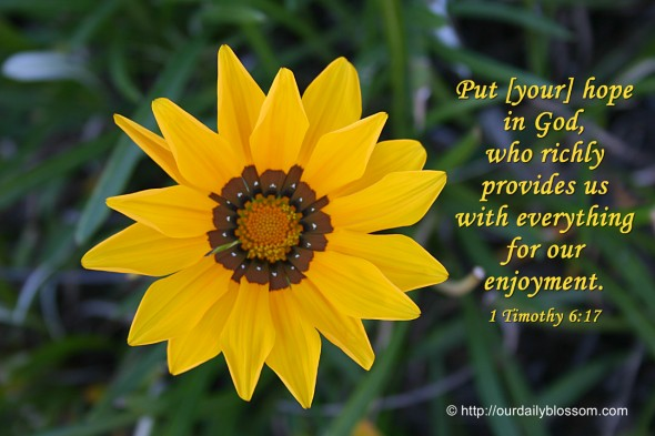 Put [your] hope in God, who richly provides us with everything for our enjoyment. ~ 1 Timothy 6:17
