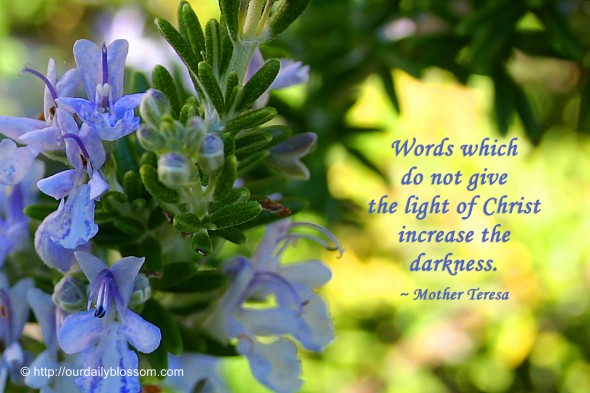 Words which do not give the light of Christ increase the darkness. ~ Mother Teresa