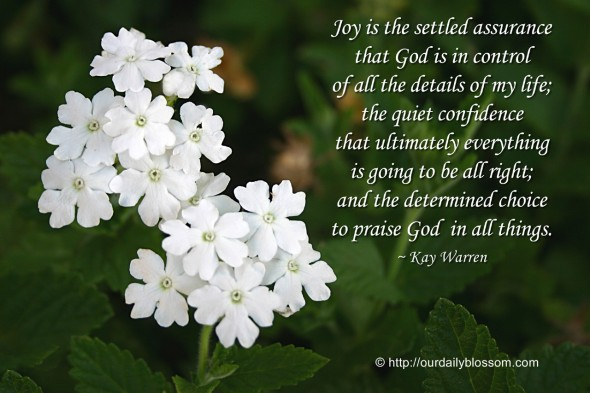 Joy is the settled assurance  that God is in control  of all the details of my life; the quiet confidence  that ultimately everything  is going to be all right; and the determined choice to praise God  in all things. ~ Kay Warren