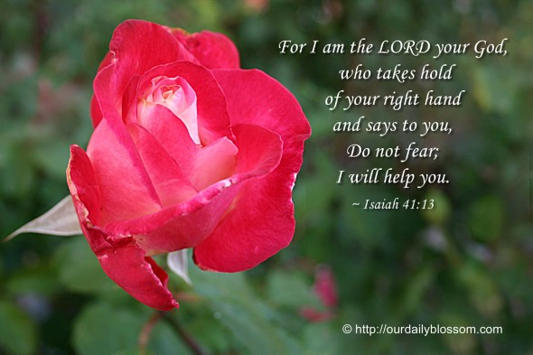 For I am the LORD your God, who takes hold of your right hand and says to you, Do not fear; I will help you. ~ Isaiah 41:13