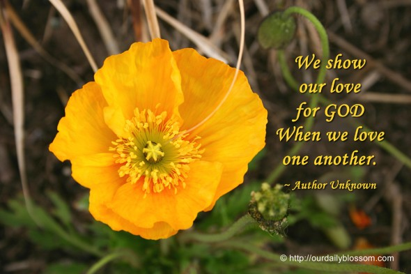 We show our love for GOD when we love one another. ~ Author Unknown