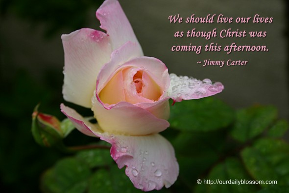 We should live our lives as though Christ was coming this afternoon. ~ Jimmy Carter