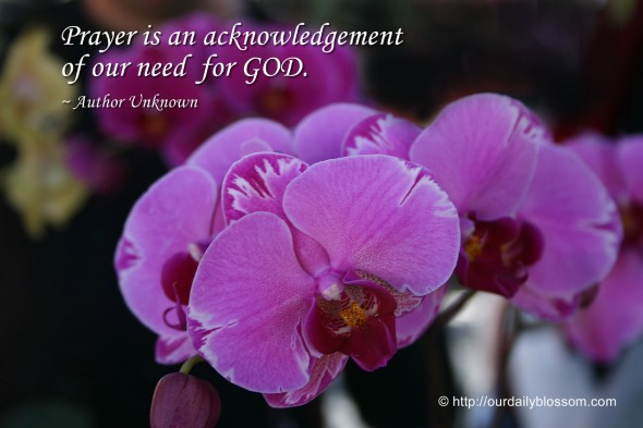 Prayer is an acknowledgement of our need for GOD. ~ Author Unknown