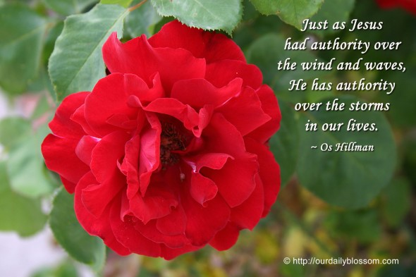Just as Jesus had authority over the wind and waves, He has authority over the storms in our lives. ~ Os Hillman