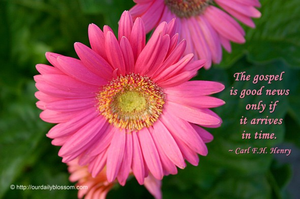 The gospel is good news only if it arrives in time. ~ Carl F.H. Henry