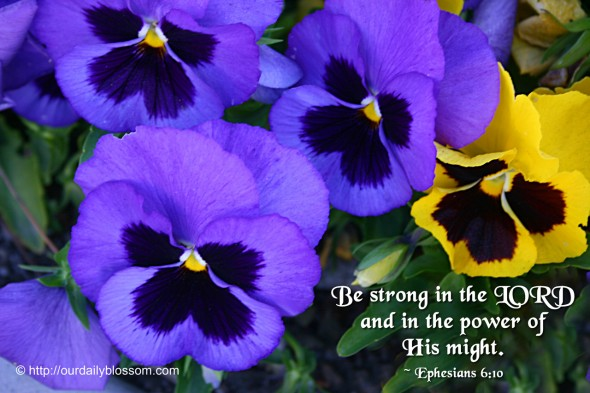 Be strong in the Lord, and in the power of his might. ~ Ephesians 6:10