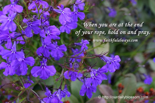 When you are at the end of your rope, hold on and pray. ~ www.faithfulalways.com