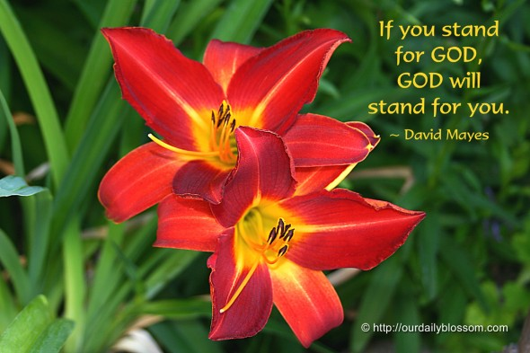 If you stand for God, God will stand for you. ~ David Mayes