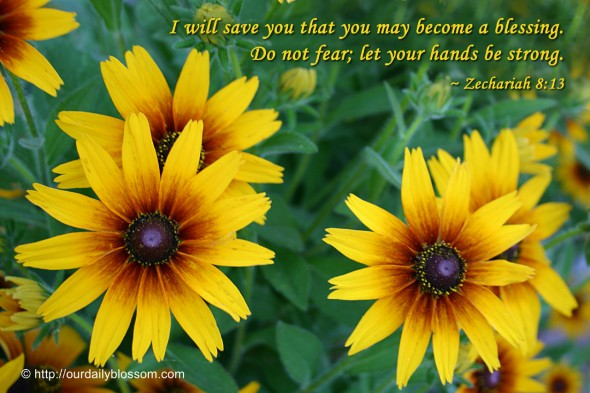 I will save you that you may become a blessing. Do not fear; let your hands be strong. ~ Zechariah 8:13