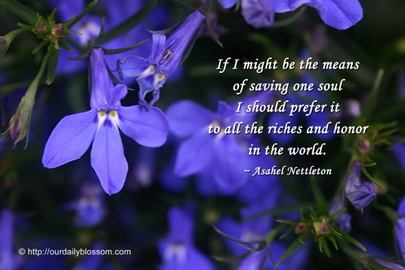 If I might be the means of saving one soul I should prefer it to all the riches and honor in the world. ~ Asahel Nettleton