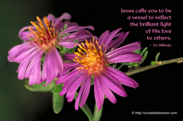 Jesus calls you to be a vessel to reflect the brilliant light of His love to others. ~ Os Hillman