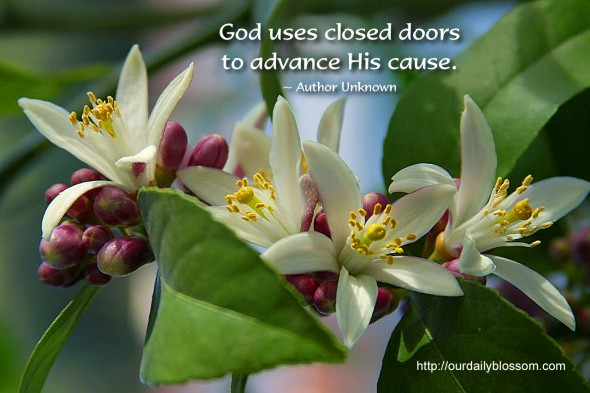 God uses closed doors to advance His cause. ~ Author Unknown