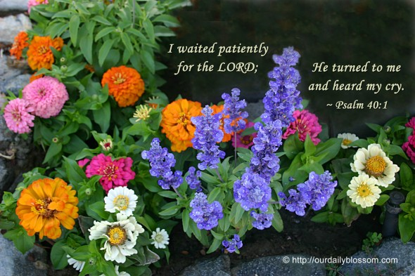 I waited patiently for the LORD; He turned to me and heard my cry. ~ Psalm 40:1