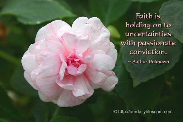 Faith is holding onto uncertainties with passionate conviction. ~ Author Unknown