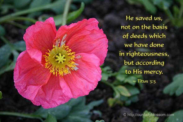 He saved us, not on the basis of deeds which we have done in righteousness, but according to His mercy. ~ Titus 3:5