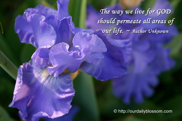 The way we live for God should permeate all areas of life. ~ Author Unknown