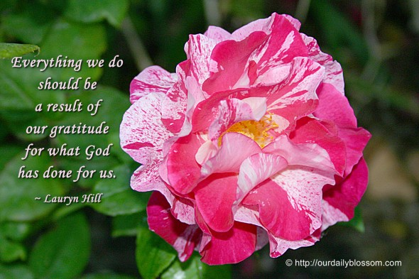 Everything we do should be a result of our gratitude for what God has done for us. ~ Lauryn Hill