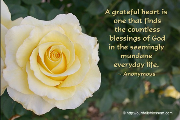 A grateful heart is one that finds the countless blessings of God in the seemingly mundane everyday life. ~  Anonymous