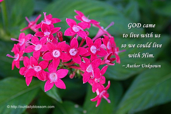GOD came to live us so we could live with Him. ~ Author Unknown