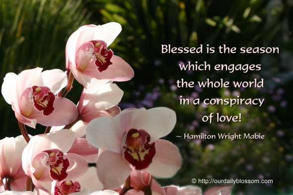 Blessed is the season which engages the whole world in a conspiracy of love! ~ Hamilton Wright Mabie