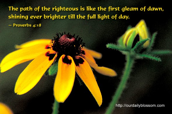 The path of the righteous is like the first gleam of dawn, shining ever brighter till the full light of day. ~ Proverbs 4:18