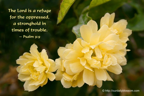 The LORD is a refuge for the oppressed, a stronghold in times of trouble. ~ Psalm 9:9