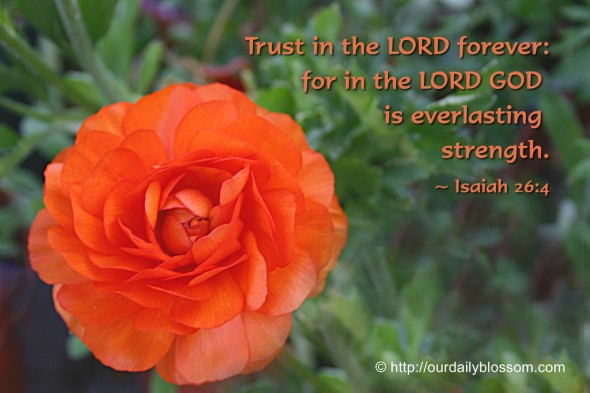 Trust in the LORD forever: for in the LORD GOD is everlasting strength:. ~ Isaiah 26:4