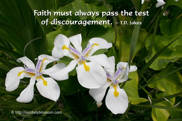 Faith must always pass the test of discouragement. ~ T.D. Jakes