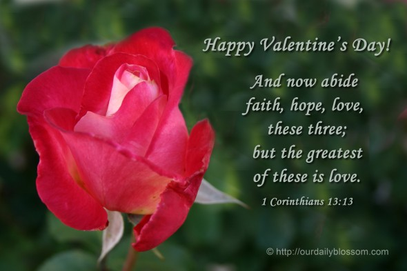 And now abide faith, hope, love, these three; but the greatest of these is love. ~ 1 Corinthians 13:13