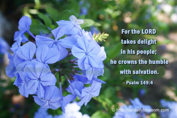 For the LORD takes delight in his people; he crowns the humble with salvation. ~ Psalm149:4