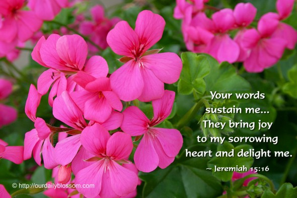 Your words sustain me... They bring joy to my sorrowing heart and delight me. ~ Jeremiah 15:16