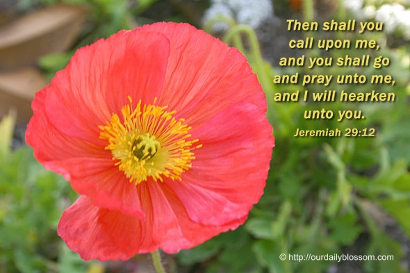 Then shall you call upon me, and you shall go and pray unto me, and I will hearken unto you. ~ Jeremiah 29:12