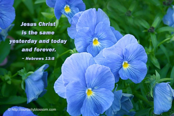 Jesus Christ is the same yesterday and today and forever. ~ Hebrews 13:8