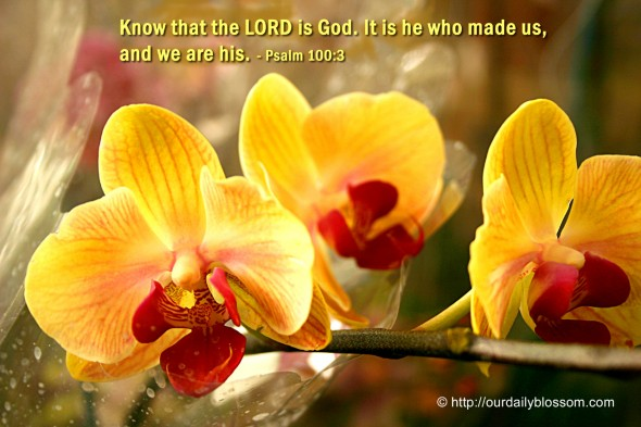 Know that the LORD is God. It is he who made us, and we are his. ~ Psalm 100:3