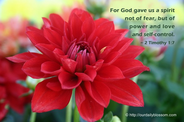 For God gave us a spirit not of fear, but of power and love and self-control. ~ 2 Timothy 1:7
