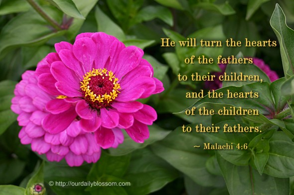 He will turn the hearts of the fathers to their children, and the hearts of the children to their fathers. ~ Malachi 4:6
