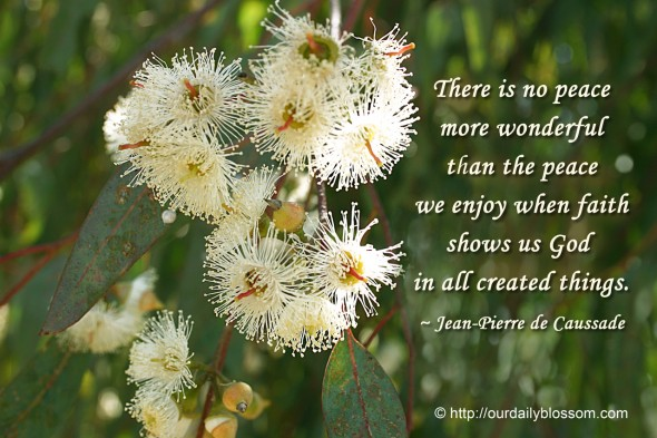 There is no peace more wonderful than the peace we enjoy when faith shows us God in all created things. ~ Jean-Pierre de Caussade