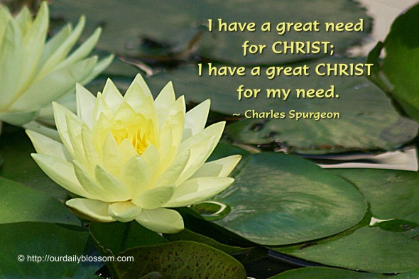 I have a great need for CHRIST; I have a great CHRIST for my need. ~ Charles Spurgeon