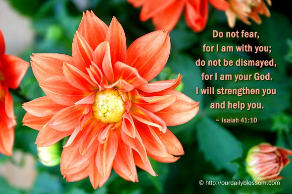 Do not fear, for I am with you; do not be dismayed, for I am your God. I will strengthen you and help you. ~ Isaiah 41:10