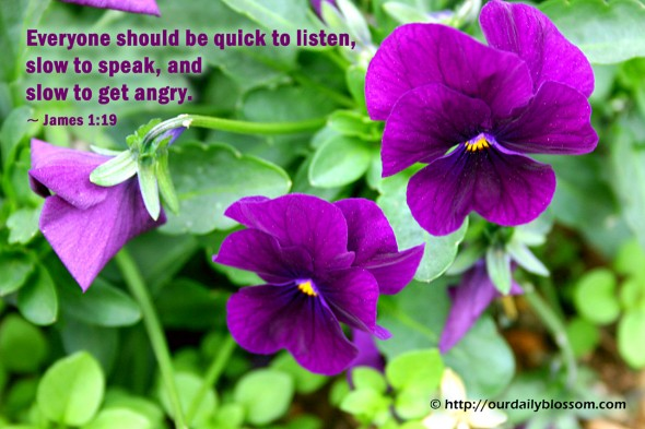Everyone should be quick to listen, slow to speak, and slow to get angry. ~ James 1:19
