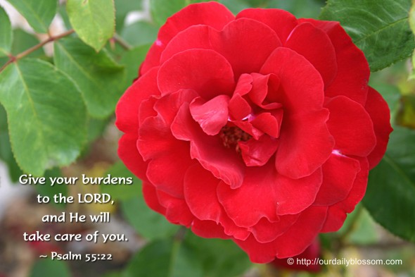Give your burdens to the LORD, and he will take care of you. ~ Psalm 55:22