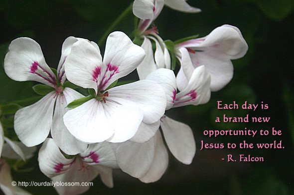 Each day is a brand new opportunity to be Jesus to the world. ~ R. Falcon