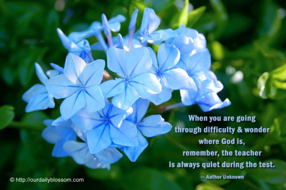 When you are going through difficulty & wonder where God is remember the teacher is always quiet during the test. ~ Author Unknown