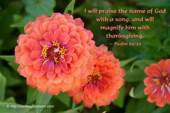 I will praise the name of God with a song, and will magnify him with thanksgiving. ~ Psalm 69:30