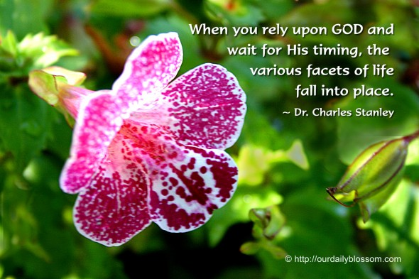 When you rely upon GOD and wait for His timing, the various facets of life fall into place. ~ Dr. Charles Stanley