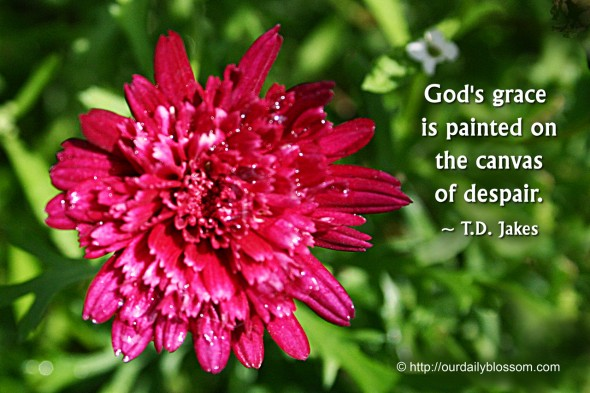 God's grace is painted on the canvas of despair. ~ T.D. Jakes